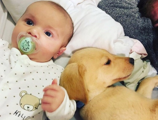 Credit: Harry Peter (3 months) and Benji the puppy